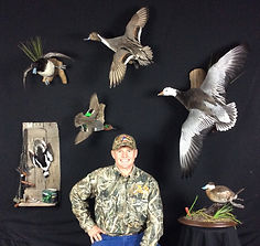 Wyatt's Waterfowl Taxidermy