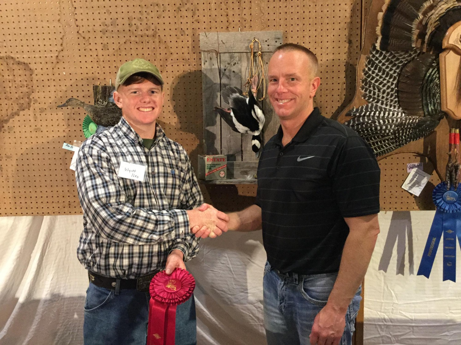 Second Place Bufflehead Mount