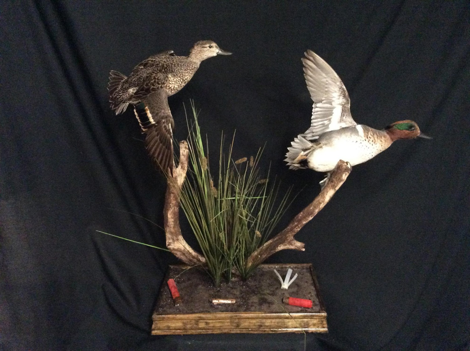 Green Wing Teal Pair Flying Mount