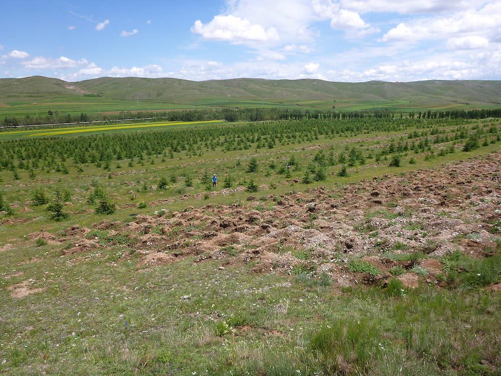 2013年の内モンゴル武山県の現場