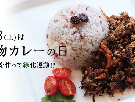 乾燥野菜5%引きセール開催中!6/5まで「薩摩の恵」(楽天市場)