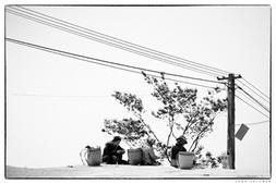 180313_Vietnam_287_3.jpg