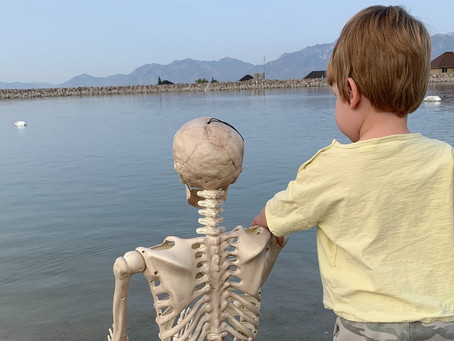 A Story About a Boy & His Skeleton Friend