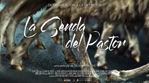 LA SENDA DEL PASTOR / THE PATH OF THE SHEPHERD
