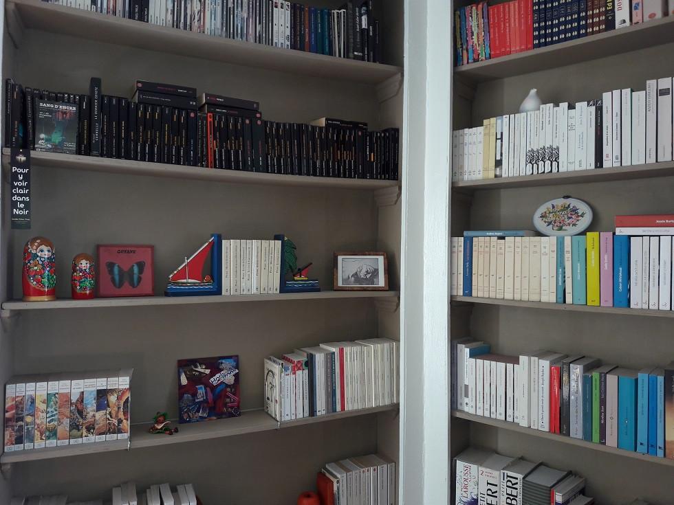 Tri dans les livres : la bibliothèque est plus aérée, plus belle. De nombreux livres ont déjà été donnés.