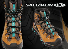 Salomon web.jpg
