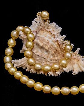 Asian Artistry fine Jewellery-5.jpg