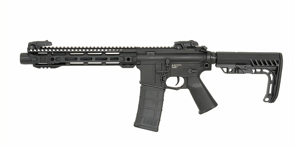 Introduction to Carbine with Live Fire