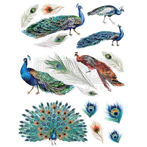 PM645090 - TRANSFER Peacock Dreams