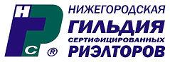 логотип НГСР-3.jpg