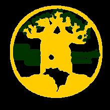 GERAÇÃO GINGA