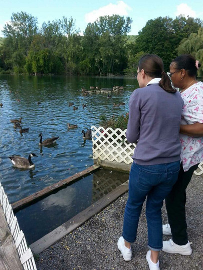 SDP Participants & Staff feed ducks at Webster Pond
