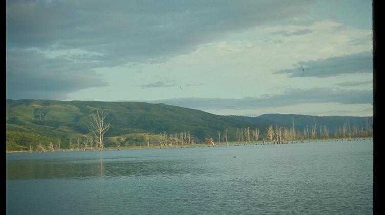 Vista del río Valdivia, 1964.