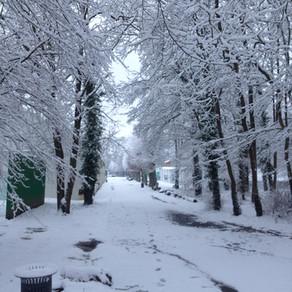 Le TCM sous la neige !