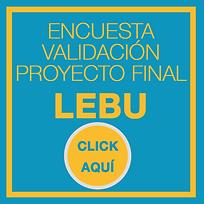 VALIDACION_LEBU.png
