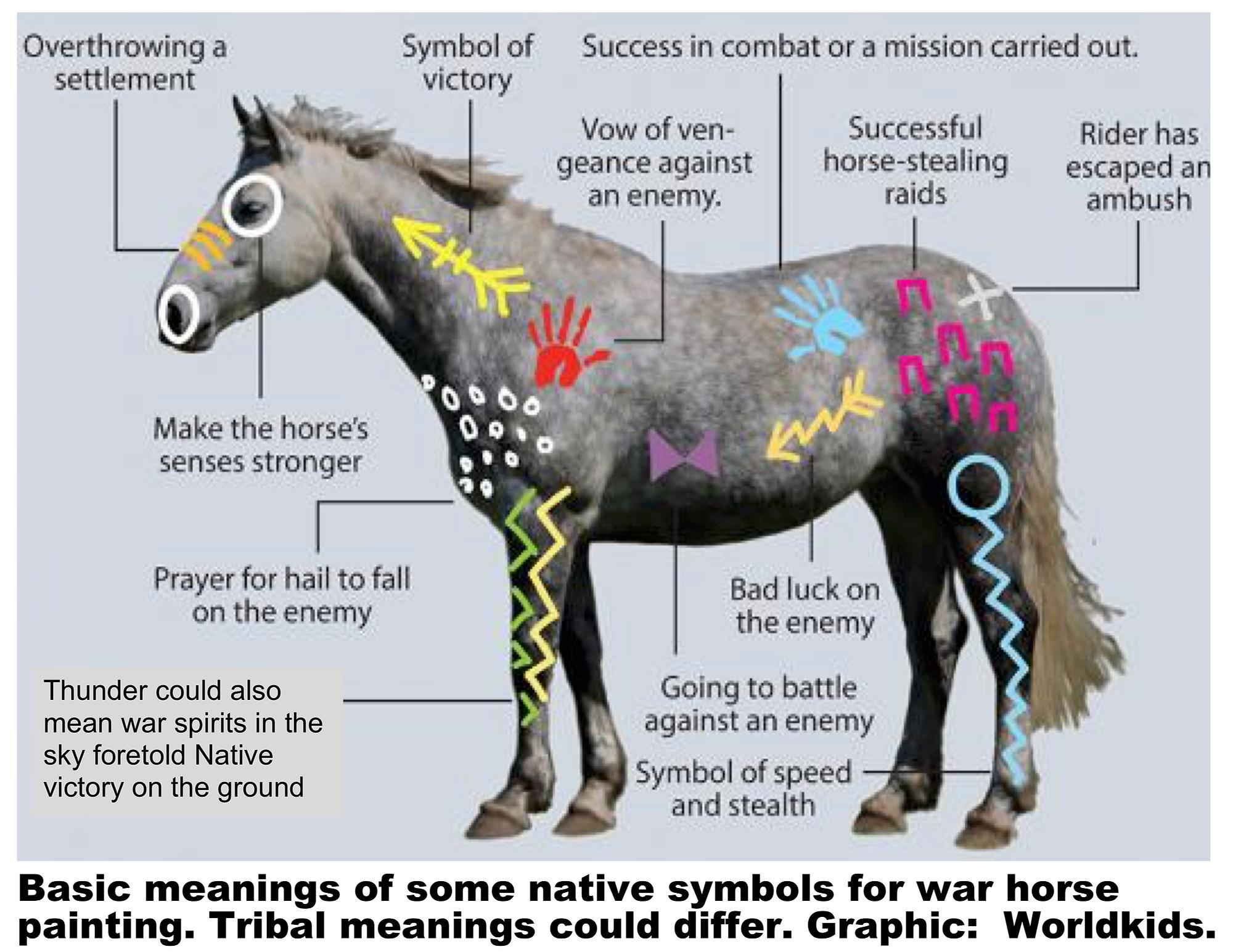Indian Warhorse Paint