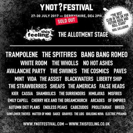 Y Not Festival - Pikehall Derbyshire
