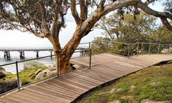 Australian Photo - Kaiki Trail