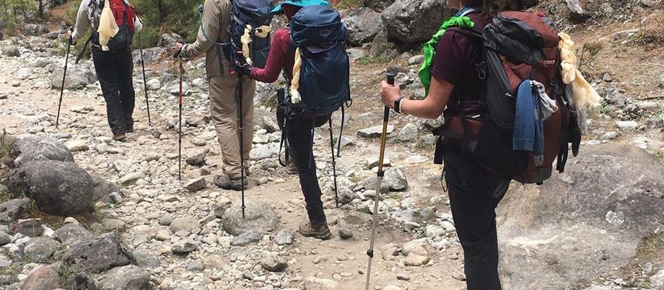 Summit Steps: Trekking Poles?