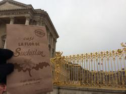 Le Chateau de Verrsailles