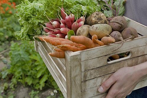 Platte Gemüsesticks mit Dip