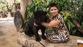 Maguito con jaguar negro hermosa foto.jp