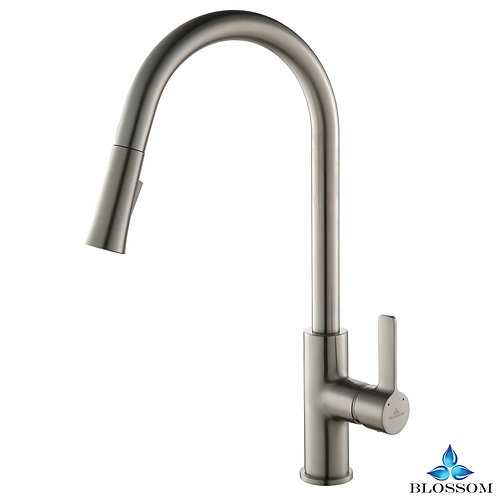 Blossom Single Handle Pull Down Kitchen Faucet - Brush Nickel F0120102