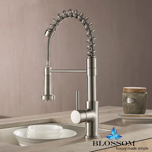 Blossom Single Handle Pull Down Kitchen Faucet - Brush Nickel