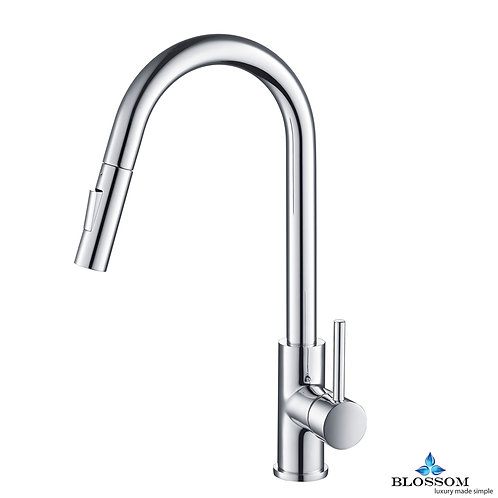 Blossom Single Handle Pull Down Kitchen Faucet - Chrome F0120601