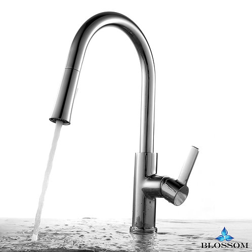 Blossom Single Handle Pull Down Kitchen Faucet - Chrome F0120101