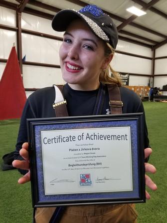 BFK9 Trainer, Megan Clouse (Rone) Platon z Jirvoka Dvora CGC, BHx2, IGP1 Certificate