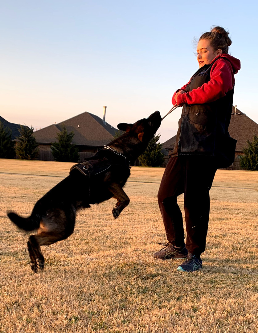 IGP/Schutzhund Trainer, Megan, & Road Warrior Empress BH, CGC, TKN, TKI