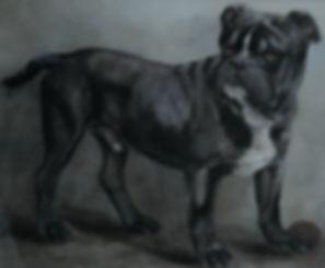 alter bulldog.jpg