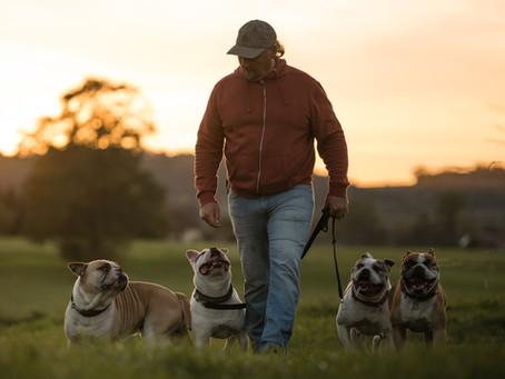 Zwinger - Das Unwort in der Hundehaltung