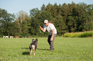 Hundezentrum-Peter-Löser-web-78.jpg