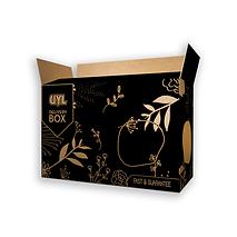 Black Shipping Box