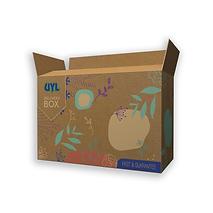 Brown Shipping Box