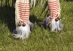 tribal_affairs_image_01-patricia-ribas