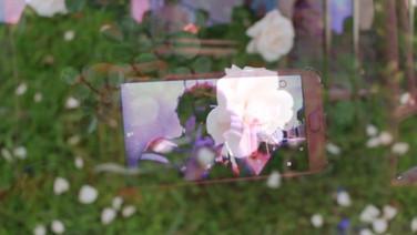 MEMÓRIAS DE 02/2019  (idem)  Luiz Eduardo Kogut, Brasil, 2019, 25min.  Montagem sentimental do passado, presente e futuro das memórias do segundo mês de 2019.  DATAS E HORÁRIOS DE EXIBIÇÃO - CINEMATECA DO MAM 14/07 - 20H 17/07 - 13H  SESC SÃO GONÇALO 23/07 - 14h