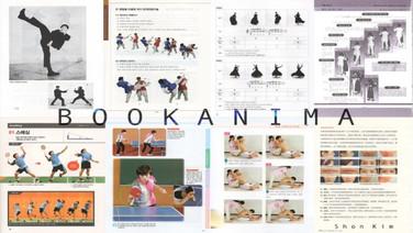 BOOKANIMA: DANCE (idem)  Shon Kim, Coréia do Sul  O objetivo é criar 'Book Cinema' no terceiro escopo entre Book e Cinema. Links de animação Livro para Cinema. Ao longo do caminho, experimenta Locomotion baseado em Cronofotografia, homenageando Edward Muybridge e Entienne Jules-Marey. Experimenta a locomoção da dança junto com seu fluxo: Ballet-coreano, dança-moderna, Jazz, dança-Aerial Silk-Tak e break .  Também no cinema: SESC SÃO GONÇALO 26/7 - 14h