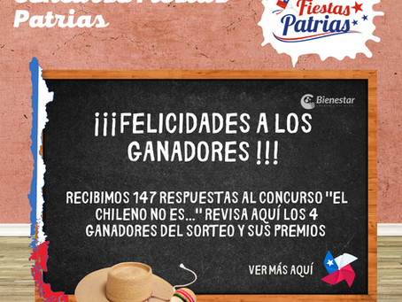 """Resultados concurso """"El chileno no es..."""""""