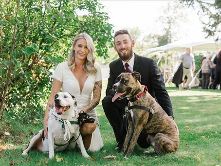Ande & Kyle: Falmouth Maine Backyard Wedding