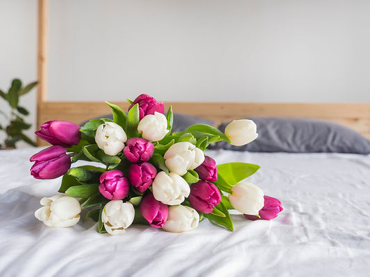 Nice bouquet with pink and white tulips