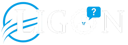Ligon Consulting, Business Solutions, Ligon Brothers
