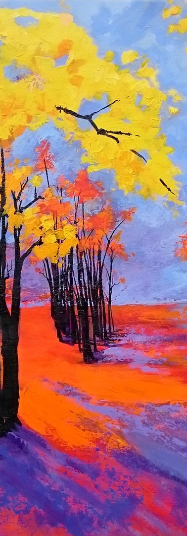 Forest in sunset