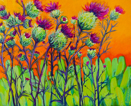 Thistle in Spring