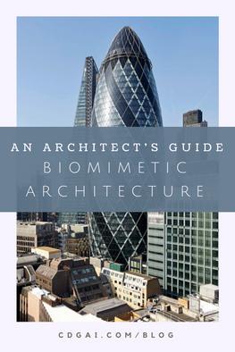 Biomimetic Architecture