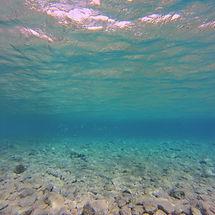 diving-786793_1920_edited.jpg