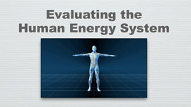 Evaluating the Human Energy System