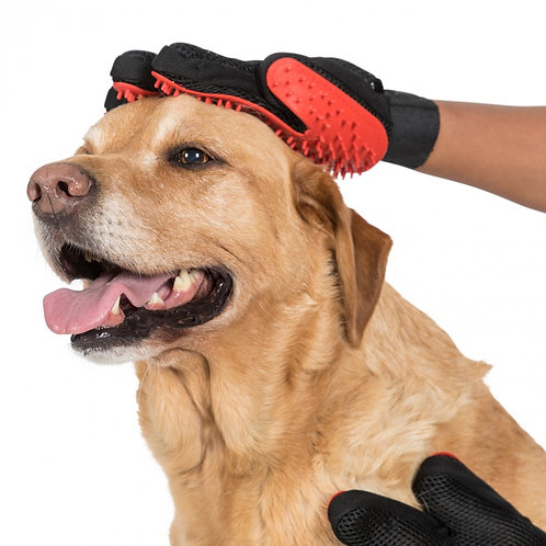 Teddy Dog Grooming Mitts